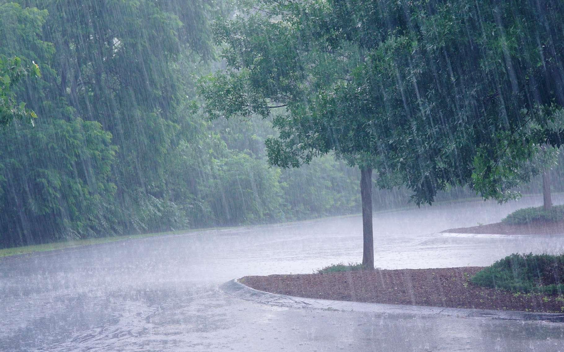 HIVERNAGE 2019: Diourbel enregistre ses premières pluies ce dimanche 30  juin - Teranga News